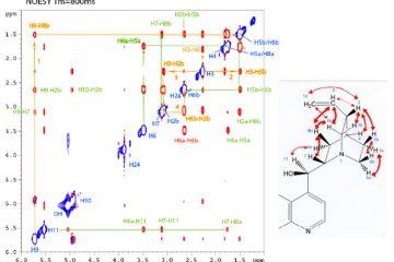 Analyse structurale par RMN